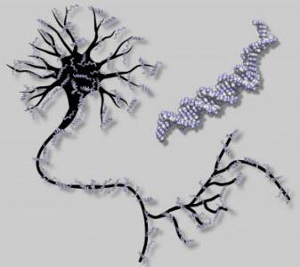 گروه توسعه, دانلود مقاله انواع شبکه های عصبی, دانلود مقالات شبکه عصبی, دانلود مقاله شبکه عصبی, دانلود مقاله شبکه های عصبی, دانلود رایگان مقاله شبکه های عصبی, دانلود مقاله در مورد شبکه های عصبی, انواع شبکه های عصبی و کاربرد آنها در الکترونیک, دانلود مقاله شبکه عصبی و کاربرد آن