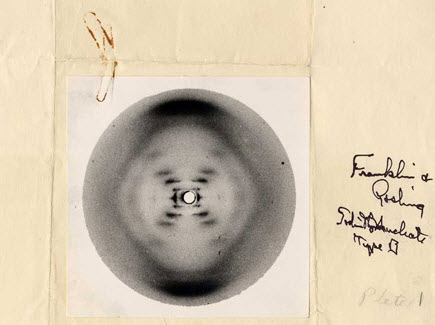Photograph 51 (DNA), by Rosalind Franklin
