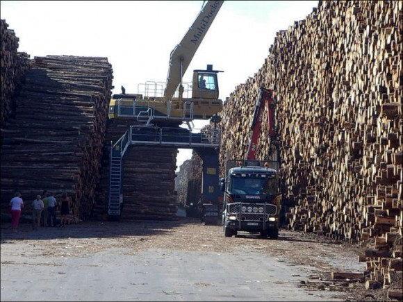 انبار چوب