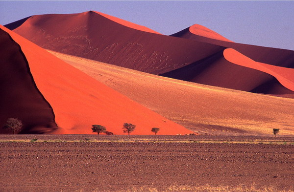 صحرای سرخ, نامیب
