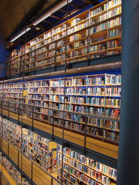 قفسه کتاب,کتابخانه دلف