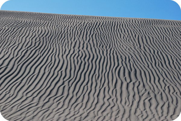 Atacama Desert 6