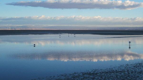 Atacama Desert 7