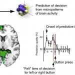 تصمیم ناخودآگاهانه در مغز، ناقض اراده آزاد؟!