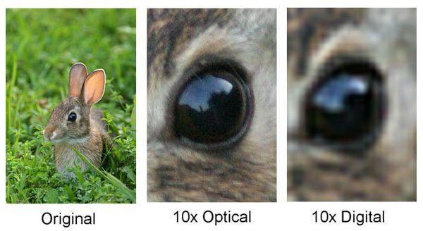 optical-digital-1zoom
