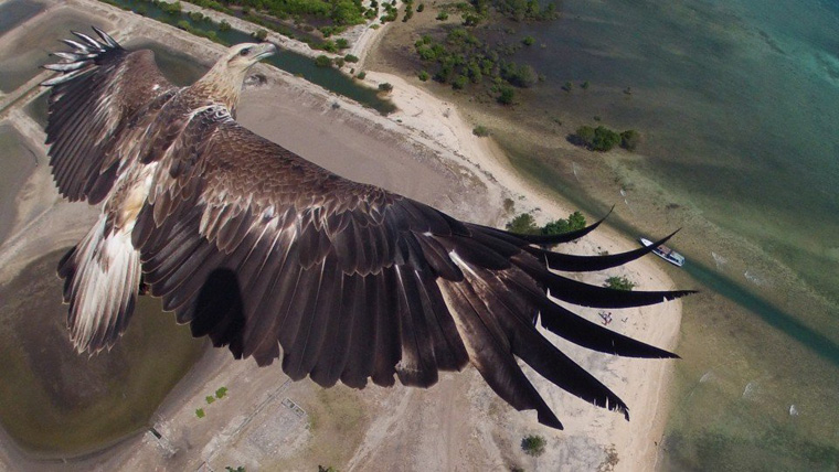 Drone-Photography-2