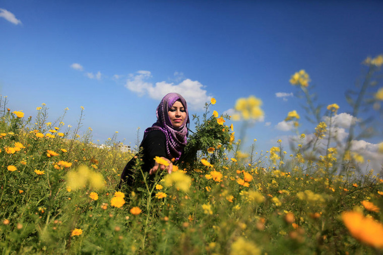 Palestinians Prepare For Vernal Equinox