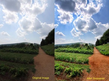 before and after snapseed editor 380x281 چگونه با گوشی عکسهای بهتری بگیریم