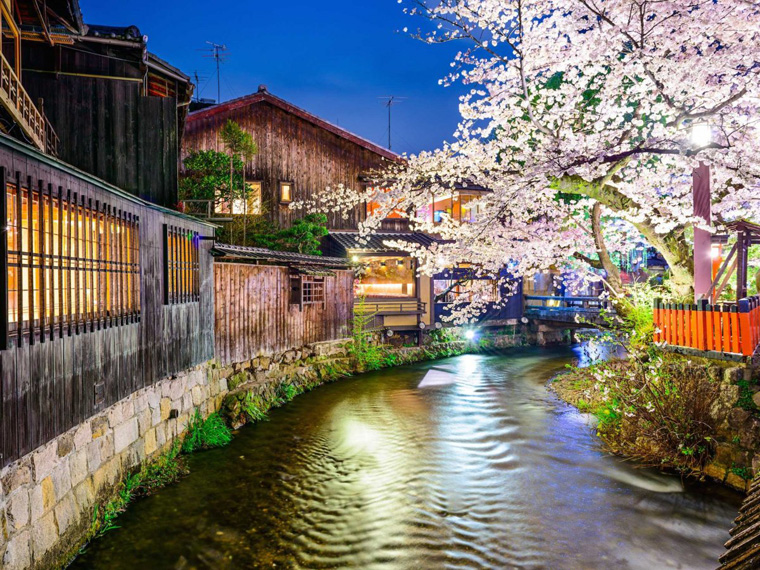 one-of-the-best-places-to-eat-an-authentic-meal-is-in-the-shirakawa-area-which-runs-along-the-shirakawa-canal-near-gion-and-is-full-of-local-restaurants-and-bars