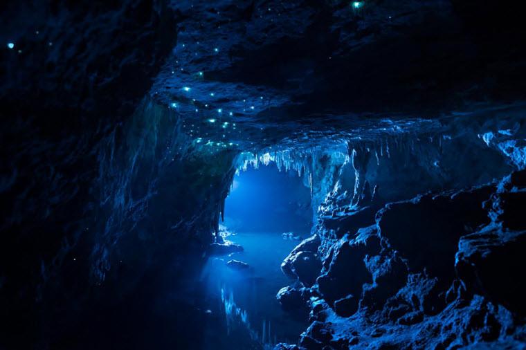 waitomo-glowworm-cave-new-zealand-joseph-michael-5__880