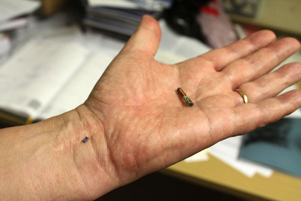 9.-implanted-RFID-chips