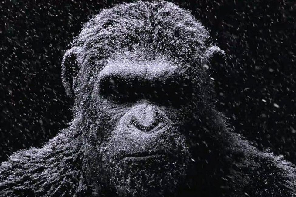 ببینید: تریلر فیلم جدید جنگ برای سیاره میمونها