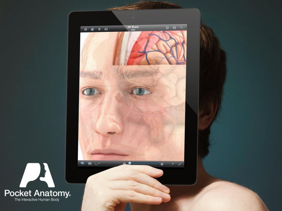 دانلود اپلیکیشن «پاکت آناتومی» که برای مدت کوتاهی رایگان شد