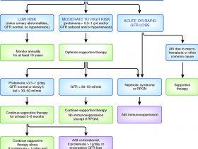 نفروپاتی IgA IgA nephropathy
