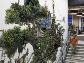 عکس درخت